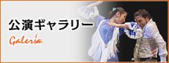 公演ギャラリー