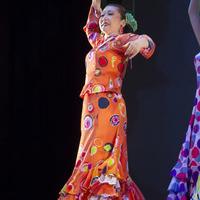 2013年フラメンコ発表会①(Sevillanas Guajira)のサムネイル