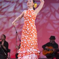 2013年フラメンコ発表会②(Alegrías, Soleá, Tiento, Siguiriya)のサムネイル