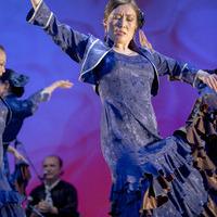 2013年フラメンコ発表会⑥(Siguiriya)のサムネイル
