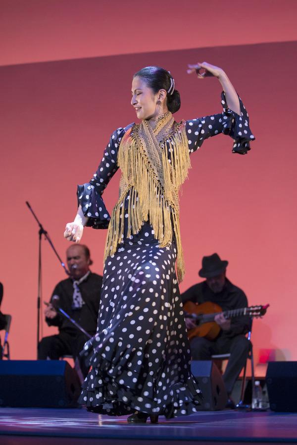 2013年フラメンコ発表会⑦(Bulería por Soleá, Fin de Fiesta)