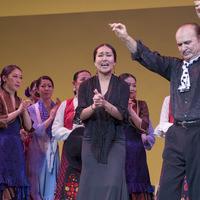 2013年フラメンコ発表会⑦(Bulería por Soleá, Fin de Fiesta)のサムネイル
