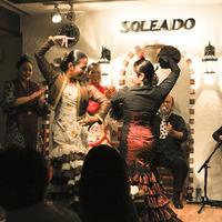 ソレアド・フラメンコライブ(2014年11月1日)・1部のサムネイル