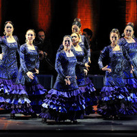 Compás de Academia Flamenca【2015年5月2日】のサムネイル