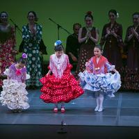 2015年6月フラメンコ発表会⑫【Fin de Fiesta】のサムネイル
