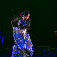 2015年6月フラメンコ発表会⑪【Soleá】のサムネイル