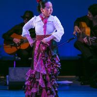 2015年6月フラメンコ発表会⑨【Bulería por Soleá】のサムネイル
