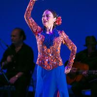 2015年6月フラメンコ発表会④【Tango de Málaga】のサムネイル