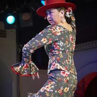 2016年7月 Garrotín (Canasta-Xeres Flamenco Vivo)のサムネイル