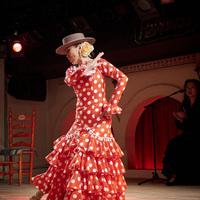 2016年7月 Garrotín2 (Canasta-Xeres Flamenco Vivo)のサムネイル
