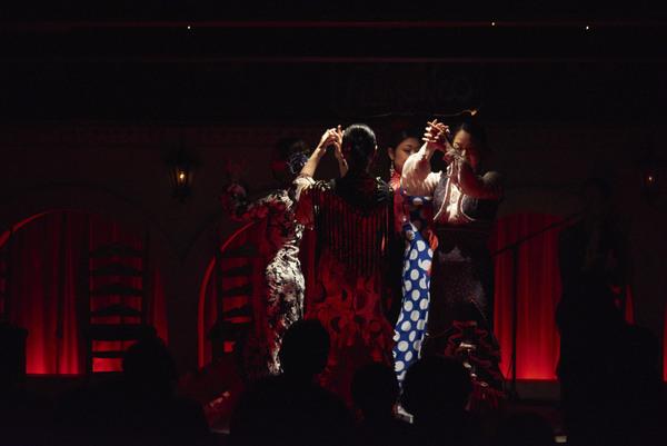 2016年7月 Bulería (Canasta-Xeres Flamenco Vivo)のサムネイル