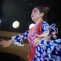 2016年7月 Alegrías (Canasta-Xeres Flamenco Vivo)のサムネイル