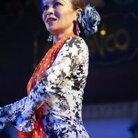 2016年7月 Tiento2 (Canasta-Xeres Flamenco Vivo)のサムネイル