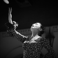 2016年7月 Siguiriya (Canasta-Xeres Flamenco Vivo)のサムネイル